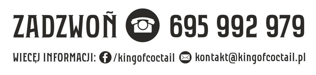 modul telefoniczny z www i e mail